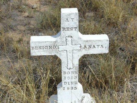 ANAYA, BENIGNO - Bernalillo County, New Mexico | BENIGNO ANAYA - New Mexico Gravestone Photos