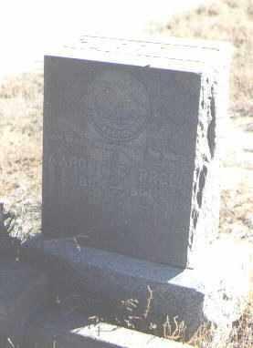 CARROLL, AARON H - Bernalillo County, New Mexico   AARON H CARROLL - New Mexico Gravestone Photos