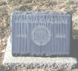COSGROVE, AMANDA - Bernalillo County, New Mexico | AMANDA COSGROVE - New Mexico Gravestone Photos
