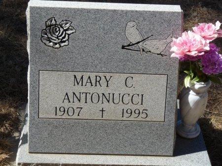 ANTONUCCI, MARY - Colfax County, New Mexico | MARY ANTONUCCI - New Mexico Gravestone Photos