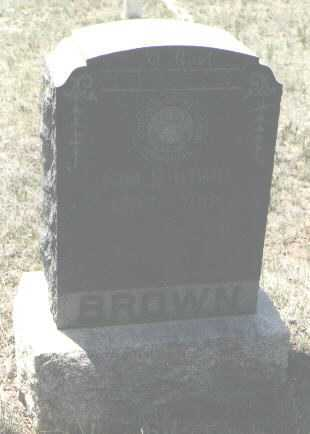 BROWN, SIM - Colfax County, New Mexico | SIM BROWN - New Mexico Gravestone Photos