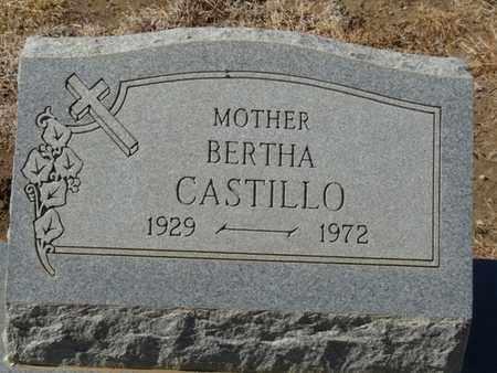 CASTILLO, BERTHA - Colfax County, New Mexico   BERTHA CASTILLO - New Mexico Gravestone Photos