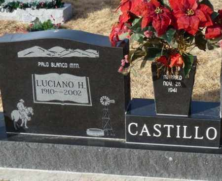 CASTILLO, LUCIANO H - Colfax County, New Mexico | LUCIANO H CASTILLO - New Mexico Gravestone Photos
