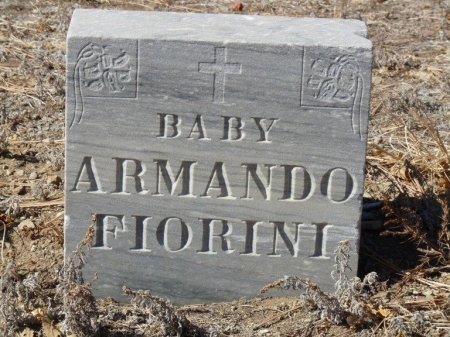 FIORINI, ARMANDO - Colfax County, New Mexico | ARMANDO FIORINI - New Mexico Gravestone Photos