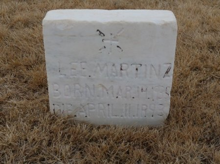 MARTINEZ, LEE - Colfax County, New Mexico | LEE MARTINEZ - New Mexico Gravestone Photos