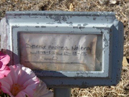 NAJERA, DESERAE ANDREA - Colfax County, New Mexico | DESERAE ANDREA NAJERA - New Mexico Gravestone Photos