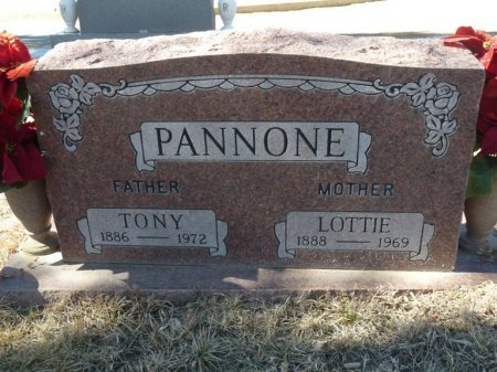 PANNONE, LOTTIE - Colfax County, New Mexico | LOTTIE PANNONE - New Mexico Gravestone Photos