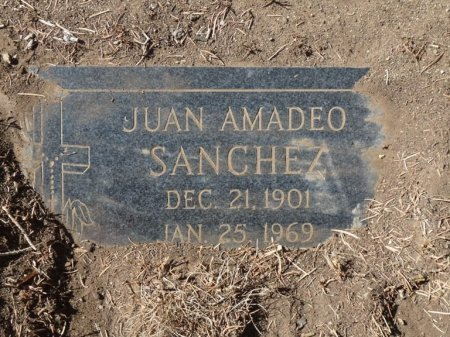 SANCHEZ, JUAN AMADEO - Colfax County, New Mexico | JUAN AMADEO SANCHEZ - New Mexico Gravestone Photos