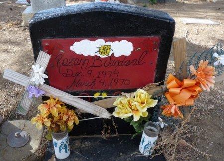SANDOVAL, ROZANN B - Colfax County, New Mexico | ROZANN B SANDOVAL - New Mexico Gravestone Photos