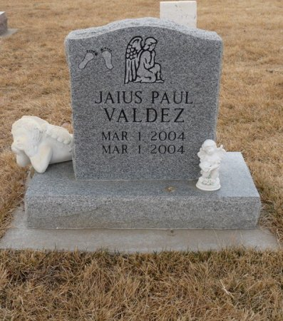 VALDEZ, JAIUS PAUL - Colfax County, New Mexico | JAIUS PAUL VALDEZ - New Mexico Gravestone Photos