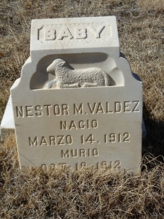 VALDEZ, NESTOR M - Colfax County, New Mexico | NESTOR M VALDEZ - New Mexico Gravestone Photos