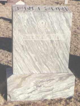 SNELSON, ROBERT C. - Curry County, New Mexico | ROBERT C. SNELSON - New Mexico Gravestone Photos