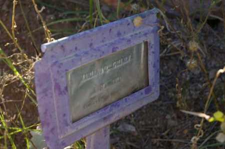 GRIJALVA, MARIANO Q - Grant County, New Mexico   MARIANO Q GRIJALVA - New Mexico Gravestone Photos
