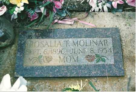 TRUJILLO MOLINAR, ROSALIA - Mora County, New Mexico | ROSALIA TRUJILLO MOLINAR - New Mexico Gravestone Photos