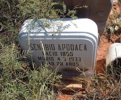 APODACA, SENABIO - Quay County, New Mexico | SENABIO APODACA - New Mexico Gravestone Photos
