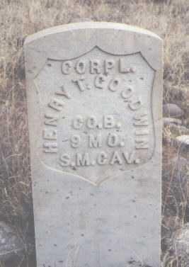 GOODWIN, HENRY T. - San Juan County, New Mexico | HENRY T. GOODWIN - New Mexico Gravestone Photos