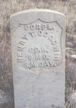 GOODWIN, HENRY T. - San Juan County, New Mexico | HENRY T. GOODWIN - New Mexico Gravestone Photos