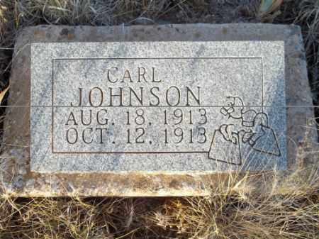 JOHNSON, CARL - San Juan County, New Mexico | CARL JOHNSON - New Mexico Gravestone Photos