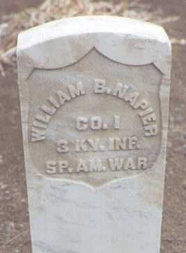 NAPIER, WILLIAM B. - San Juan County, New Mexico   WILLIAM B. NAPIER - New Mexico Gravestone Photos
