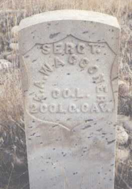 WAGGONER, A. A. - San Juan County, New Mexico | A. A. WAGGONER - New Mexico Gravestone Photos