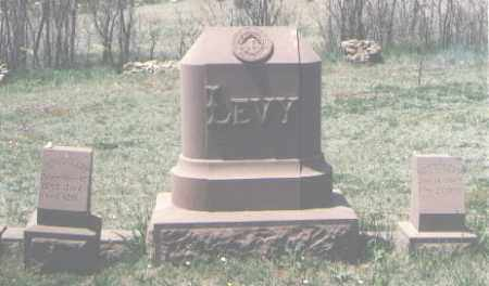 LEVY, HENRY - San Miguel County, New Mexico   HENRY LEVY - New Mexico Gravestone Photos