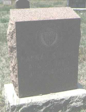 LOWE, HANNAH - San Miguel County, New Mexico | HANNAH LOWE - New Mexico Gravestone Photos