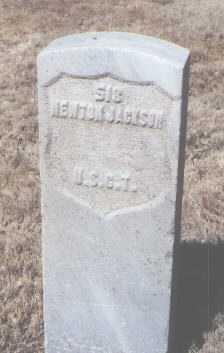 JACKSON, NEWTON - Santa Fe County, New Mexico   NEWTON JACKSON - New Mexico Gravestone Photos