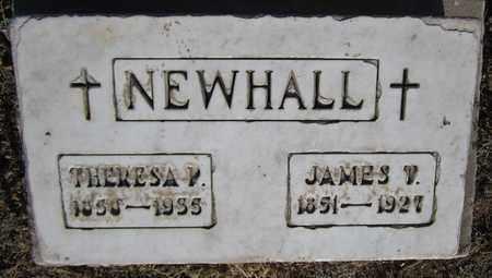 NEWHALL, JAMES T. - Santa Fe County, New Mexico | JAMES T. NEWHALL - New Mexico Gravestone Photos