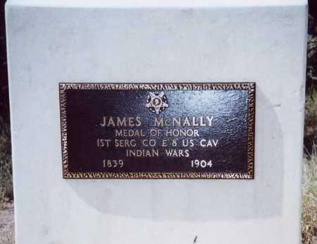 MCNALLY, JAMES - Sierra County, New Mexico | JAMES MCNALLY - New Mexico Gravestone Photos