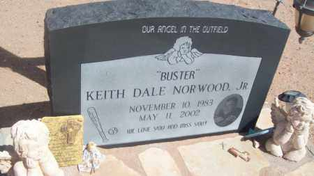 """NORWOOD JR., KEITH DALE """"BUSTER"""" - Socorro County, New Mexico 