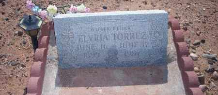 TORREZ, ELVRIA - Socorro County, New Mexico | ELVRIA TORREZ - New Mexico Gravestone Photos